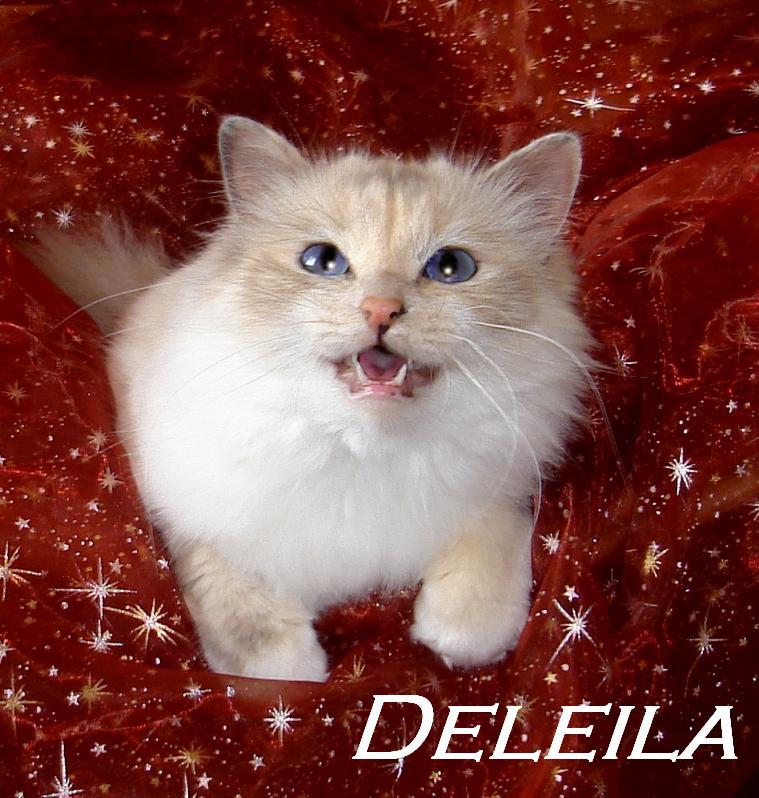 Deleila