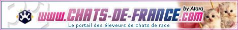 Link CHATS-DE-FRANCE